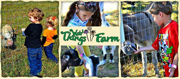 Wild Things Farm