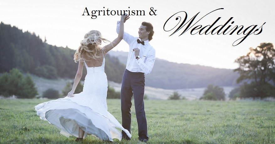 Agritourism & Weddings