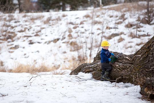 Tree Pruning Edmonton