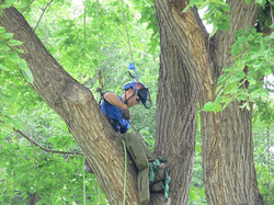 Prairie Chapter Climbing Competition