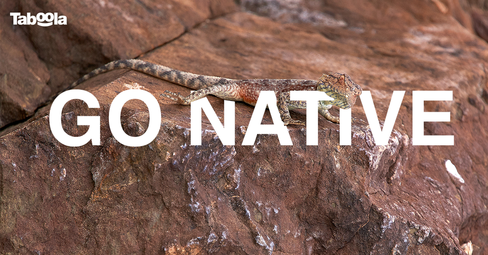 Go-Native_v1Facebook-single.png