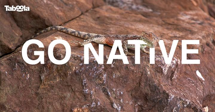Go-Native_v1Facebook-single.png