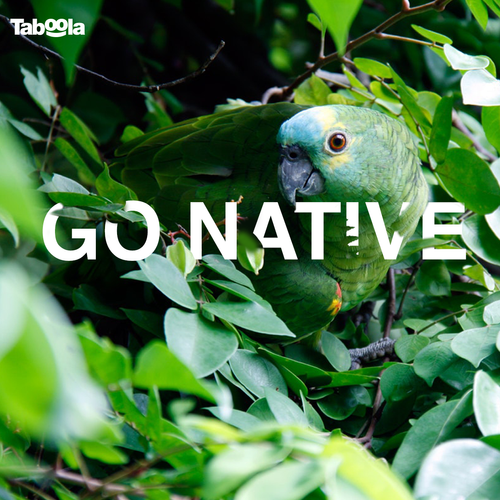 Go-Native_v1FBslideshow_1.png
