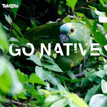 Go-Native_v1FBslideshow_1.png
