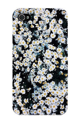 Land of Daisies