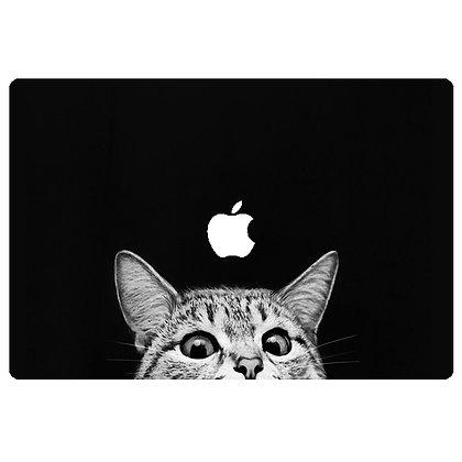 Bottom Peekaboo Cat
