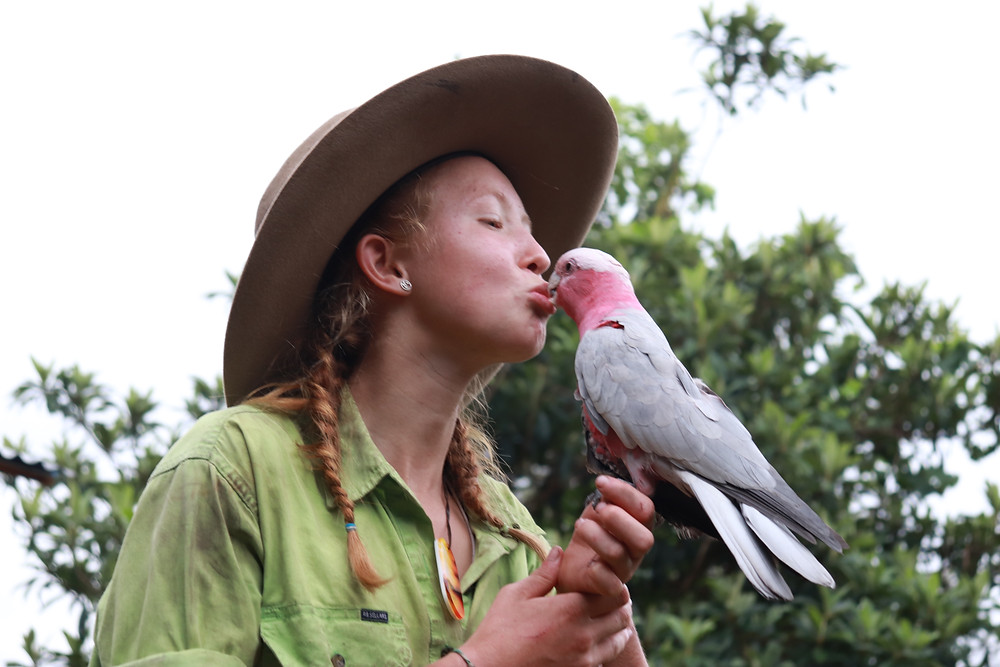 Grace and Hugh - Piano Pushers: Girl and bird share a kiss after the Nymboida bushfire (Grace and Hugh Piano Songwriter Blog)