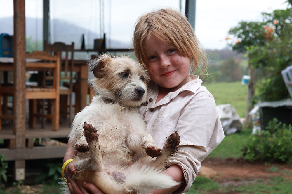 Girl and Jack Russel cuddle after Nymboida bushfire (Grace and Hugh Songwriter Blog)