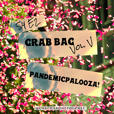 S4E2 Grab Bag Vol V Pandemicpalooza! .PN