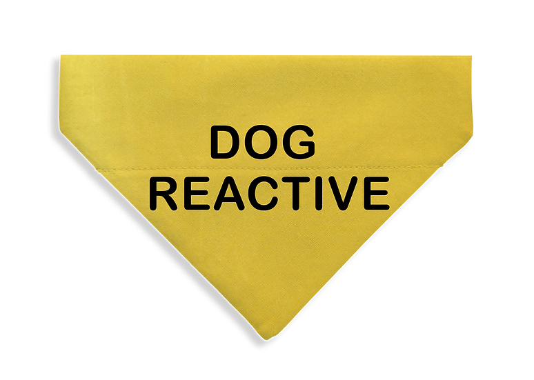 Dog Reactive Bandana - From $17