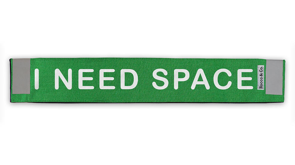 I Need Space Lead Cover - $35