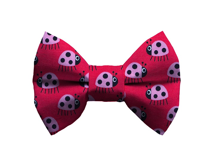 Lady Bug Bow Tie - From $10