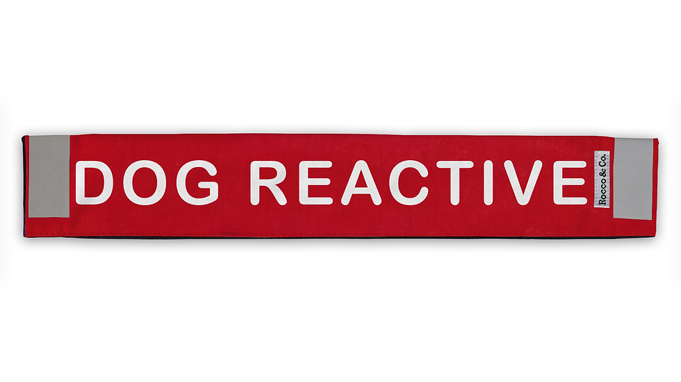 Dog Reactive Lead Cover - $35