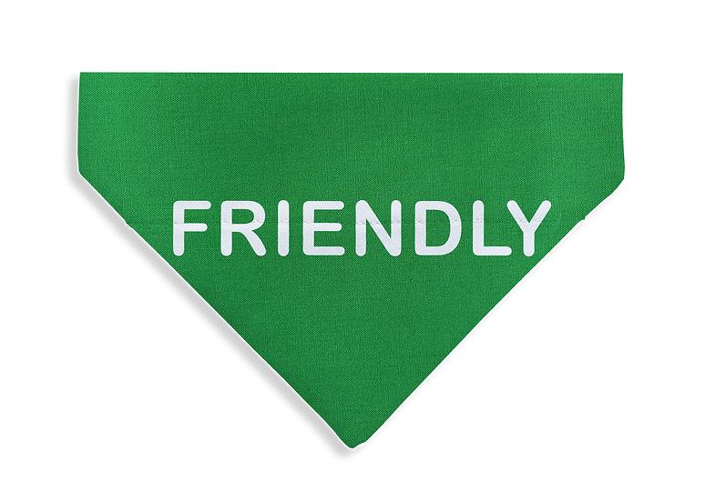 FRIENDLY Bandana - From $17