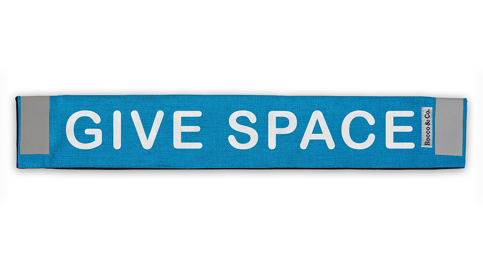 Give Space Lead Cover - $35