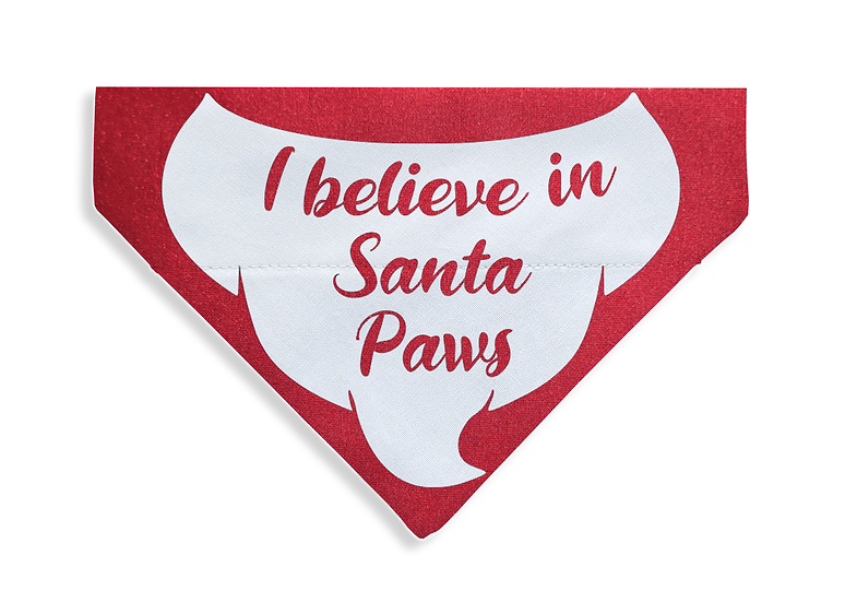 Believe in Santa Paws Bandana