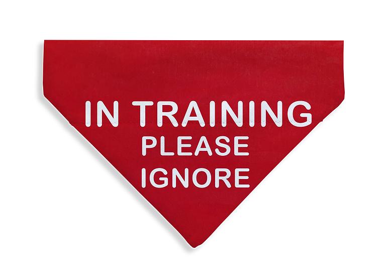 Training, Ignore Bandana - From $17