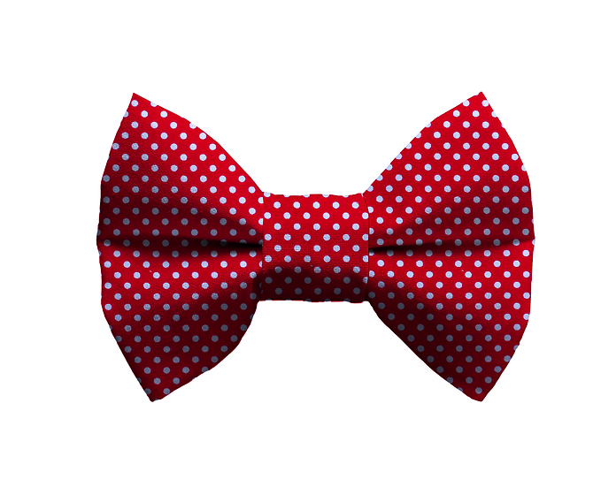 Polka Dot Bow Tie - From $10