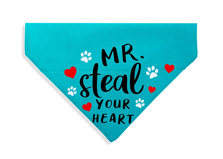 Mr. Steal Your Heart Bandana - From $17