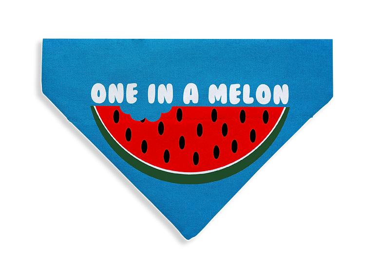 One In a Melon Bandana - From $17