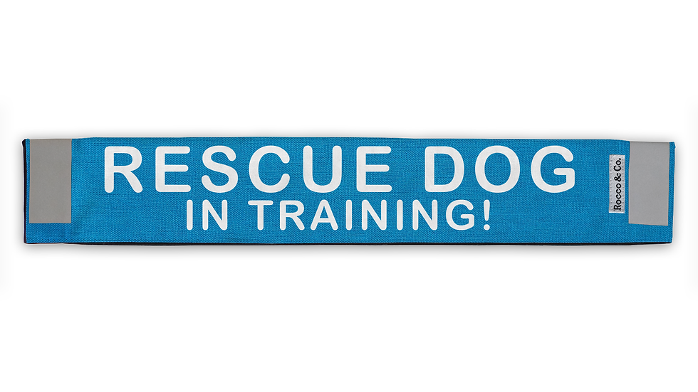 Rescue Dog In Training Lead Cover - $35