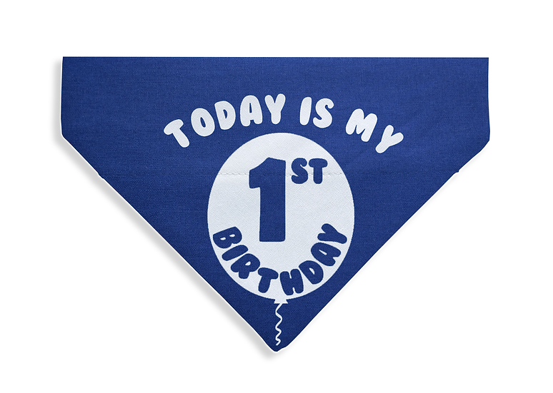 Today is My Birthday Bandana - Custom Age - From $17