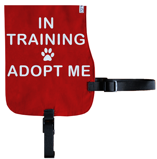 In Training - Adopt Me Cotton Vest - From $20