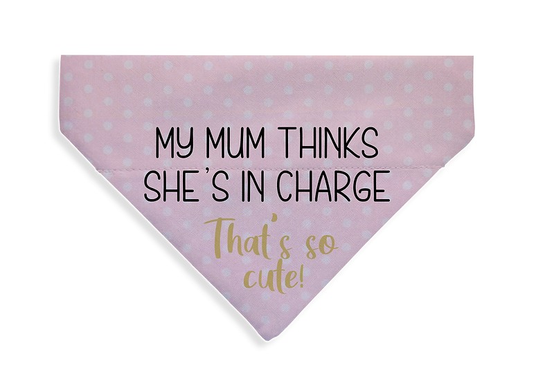 Mum's In Charge - From $17