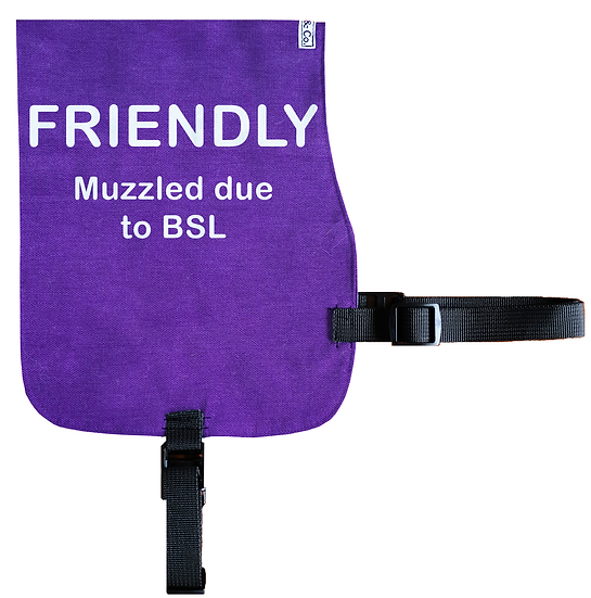 Friendly - Muzzled due to BSL Cotton Vest - From $20