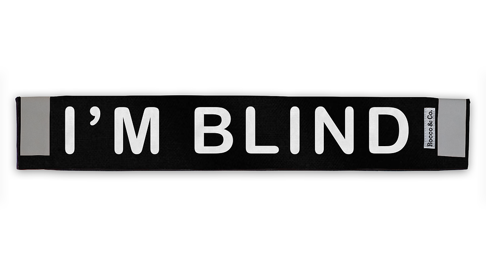 I'm Blind Lead Cover - $35