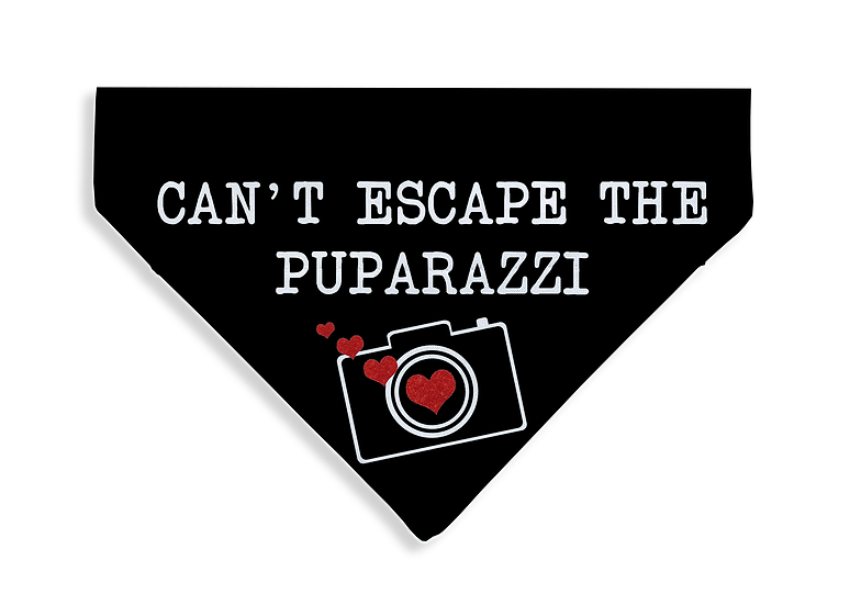 Puparazzi Bandana - From $17
