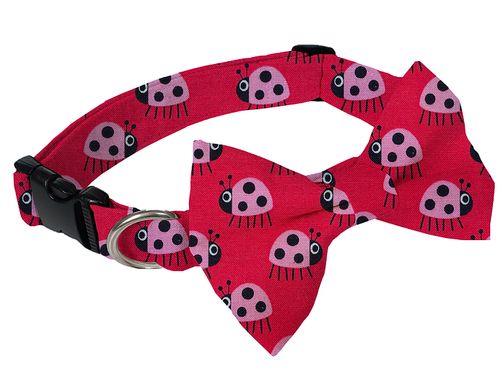 Lady Bug Collar (Bow Tie Optional) - From $30