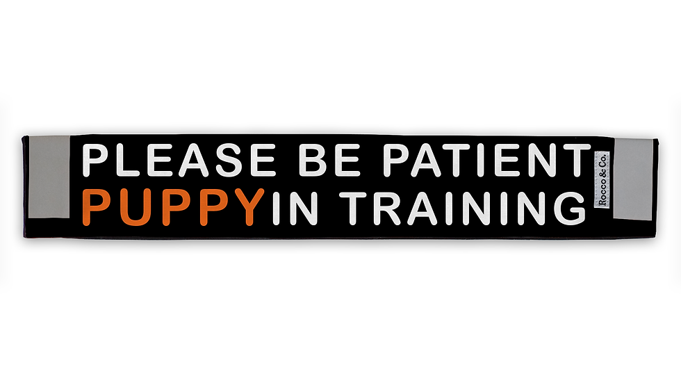 Puppy In Training Lead Cover - $35