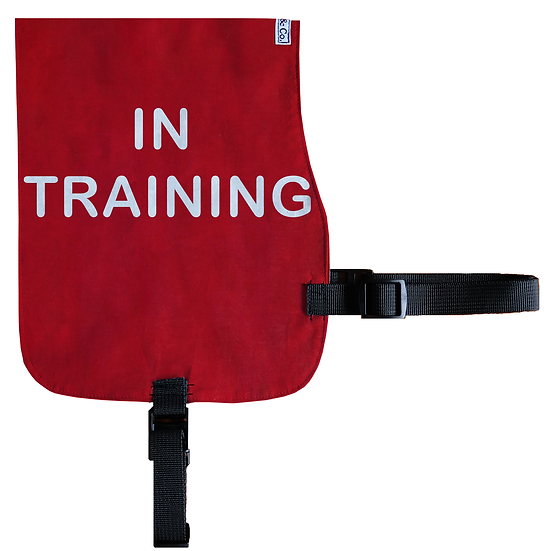 In Training Cotton Vest - From $20