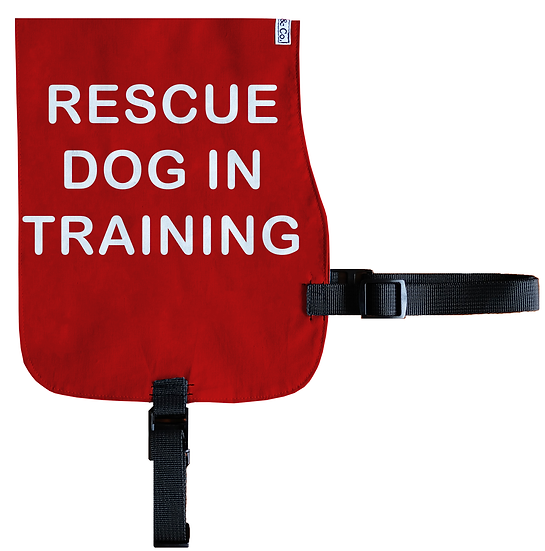 Rescue Dog In Training Cotton Vest - From $20