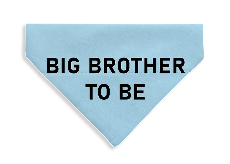 Big Brother To Be - From $17