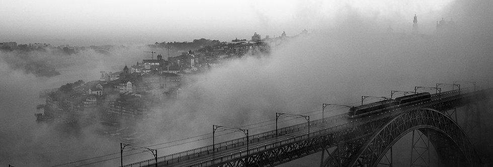 Foggy Morning   Daniel Rodrigues