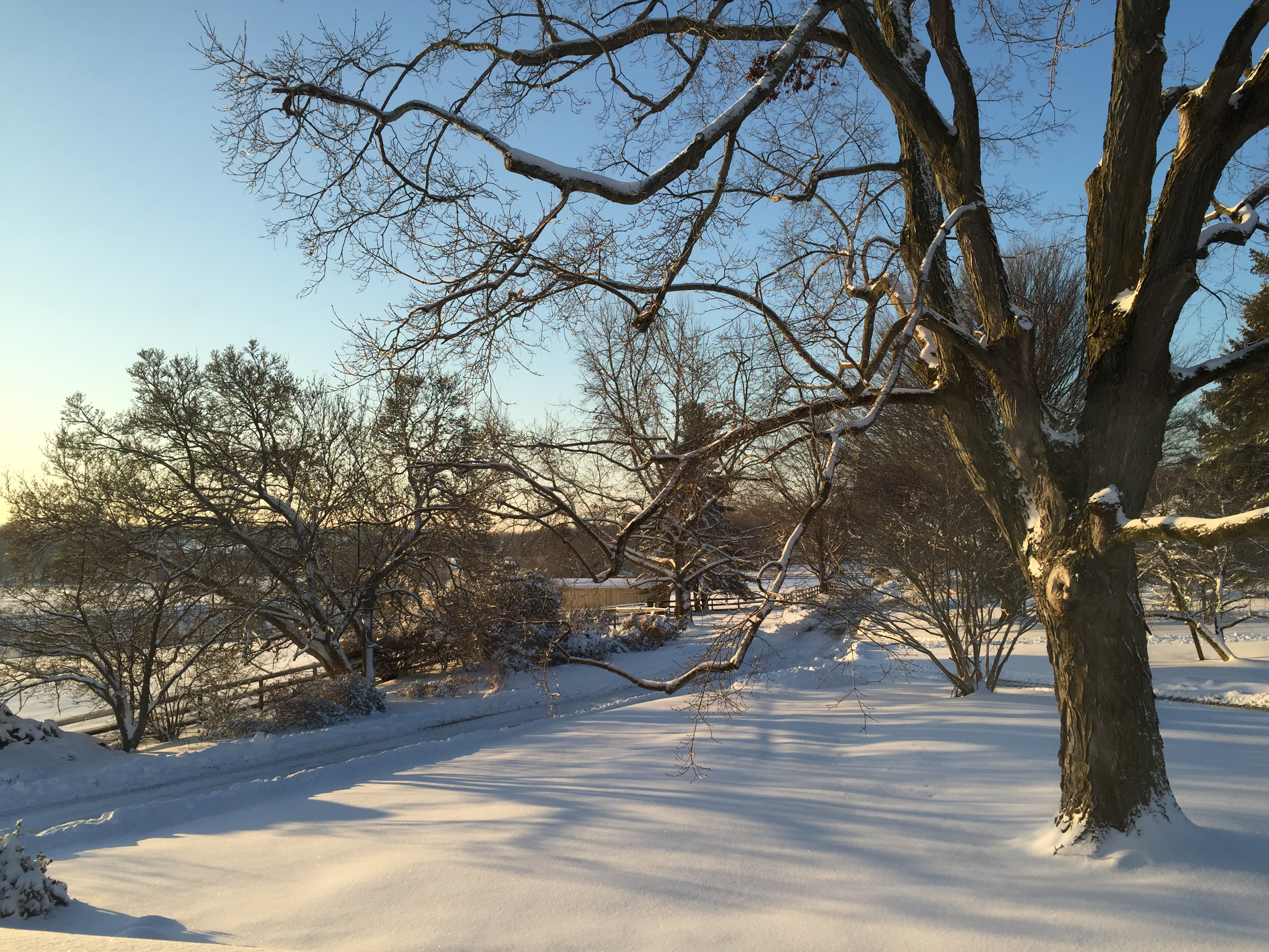 Quiet winter morning
