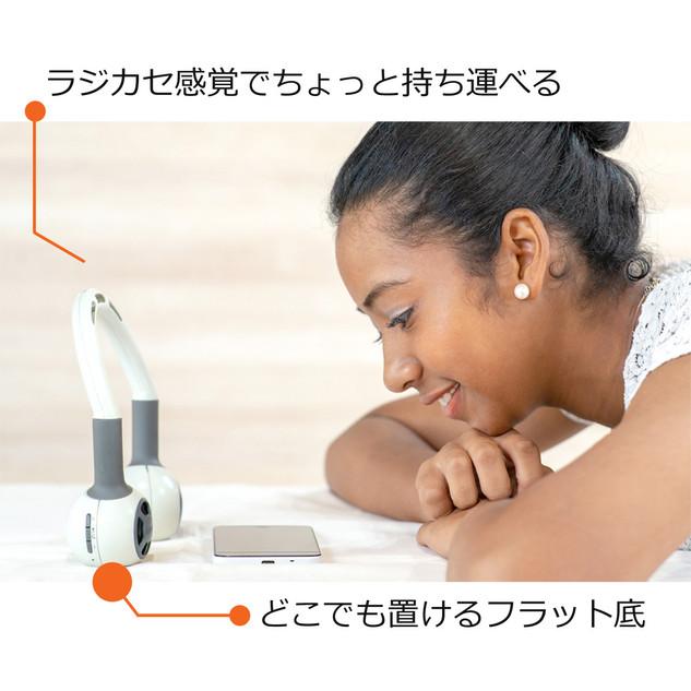 開発_ポータブル説明.jpg