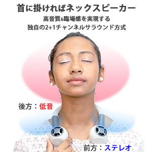 開発_サラウンド説明.jpg