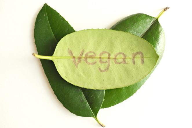 Vegan Hair Salon