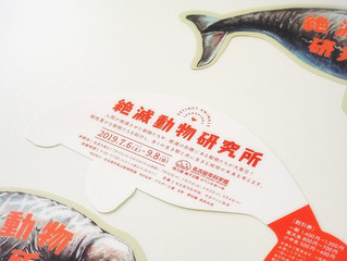 名古屋市科学館「守ろう!地球のたからもの 絶滅動物研究所」割引付きしおり