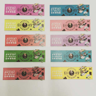 名古屋市博物館『よみがえれ!シーボルトの日本博物館展』割引栞