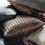 Thumbnail: PIED DE PULLE  - SQUARE PILLOW