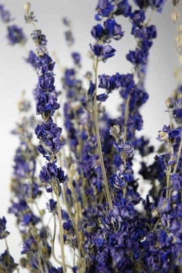 Purple dried larkspur bundle