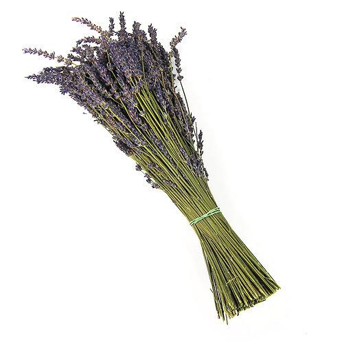 Dried Lavender Bundle