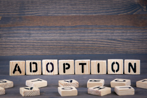 Adoption History Project