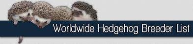 Hedgehog_Breeder_List