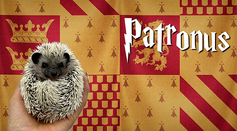Patronus_Hedgehog.png