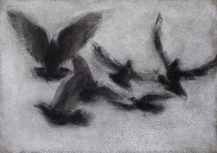 bird1highres.jpg